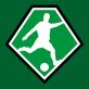 FC Weesp 1 - DWS 1 afgelast